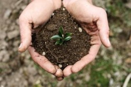 خاک چیست